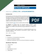 IYA012-G02-PV03-CO-Esp_v0.pdf