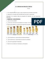 Guía n°2 (8°)