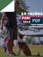 eBook 10 Razo_es - Dante Camacho.pdf