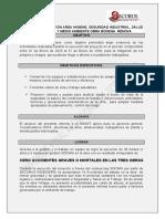 modelo informe samper arenas.doc