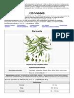 cannabis-1.03