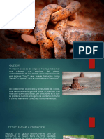 OXIDACION 22.pdf