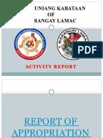 SANGGUNIANG KABATAAN 2020 report.pptx