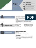 Curriculum_Vitae_Format.docx hoja de vida en ingles