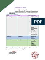 Fisiopatologia 6.1