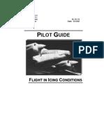 AC91-74 Icing Pilot Guide