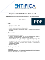 Organizaciòn social (2).pdf