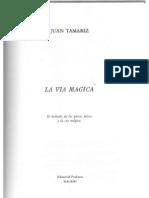 Juan Tamariz - La via Magica