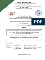 These-Merzougui-Imene.pdf