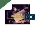 Formação em Psicanálise Clínica - Módulo 04.pdf