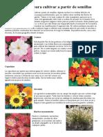 Plantas - Anuales Para Cultivar a Partir de Semillas