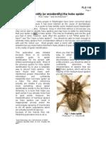 Hobo Spider Identification