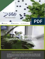 EXPORTACIÓN DE ARANDANOS (Perú)