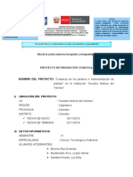 Proyecto comunal.docx