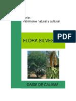 cartilla vegetacion de Calama