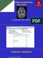 Copia de   sesion 22  USMP ANAT CEREBRAL .pdf
