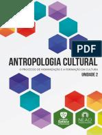 antcult_un2.pdf