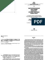 Учебник патанат.pdf