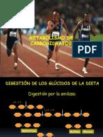 Metabolismo de carbohidratos 2016