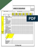 CHECK LIST ARNES DE SEGURIDAD.xlsx