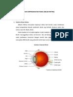 Ablatio Retina,