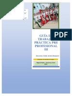 GUIA PRACTICA PRE PROFESIONAL III