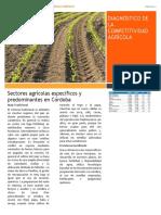 Cartilla Diagnóstico de la Competitividad Agrícola