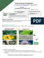 Guía 4 guia integrada  ciencias  naturales grados 4 y 5 Mariela Pino. LA CALERA. IE. LAS MERCEDES. (1) CN