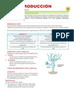 La-Reproducción I- PRE.docx
