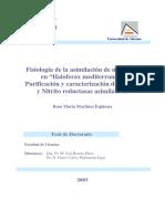 fisiologia-de-la-asimilacion-de-nitrogeno-en-haloferax-mediterranei-purificacion-y-caracterizacion-de-nitrato-y-nitrito-reductasas-asimilativas--0 (1).pdf