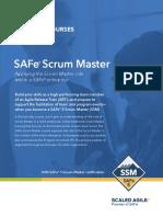 5.0-SSM-PARTNER-DIGITAL