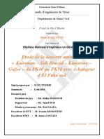 pfe-sires-copie-finale.docx