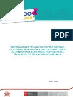 Orientaciones Pedagogicas Para Brindar La Retroalimentacion a Los Estudiantes Ccesa007