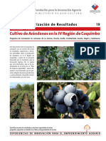CULTIVO DE ARANDANOS EN LA IV REGION.pdf