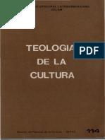 CELAM_Teología de la cultura