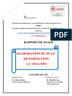 ELABORATION DU PLAN DE FORMATION A L'IPS-CNPS.pdf