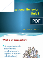 intro to OB PPT
