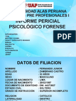 INFORME PERICIAL PSICOLÓGICO FORENSE_NANCY.ppt