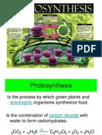 Botany 102 ( Lab ) - Photosynthesis