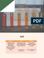 MR Metil Red