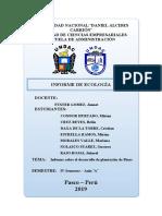 informe final plantacion.doc