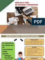 Tipos de empresa en el Perú, formalización, ventajas y desventajas-DANNY CASILLA COPA