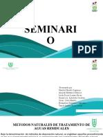 SEMINARIO DE SISTEMAS DE TRATAMIENTOS NATURALES diapositivas (1)
