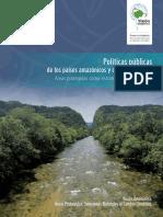 poliiticas_publicas_de_los_paises_amazonicos_y_cambio_climatico_final.pdf