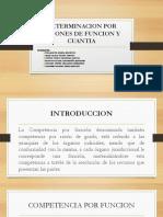 TEMA 9 DETERMINACION POR RAZONES DE FUNCION Y CUANTIA