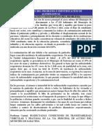Perfil Proyecto Vial Saravena