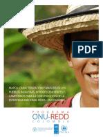UNDP-RBLAC-MapeoActoresEstrategiaREDD+CO.pdf