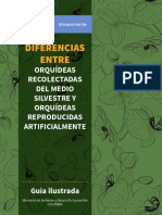 GUÍA ILUSTRADA ORQUIDEAS.pdf
