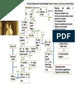 Mapa conceptual Bartolome de Las Casas