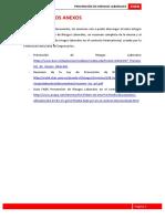 Enlaces de anexos Prevención de Riesgos Laborales.pdf